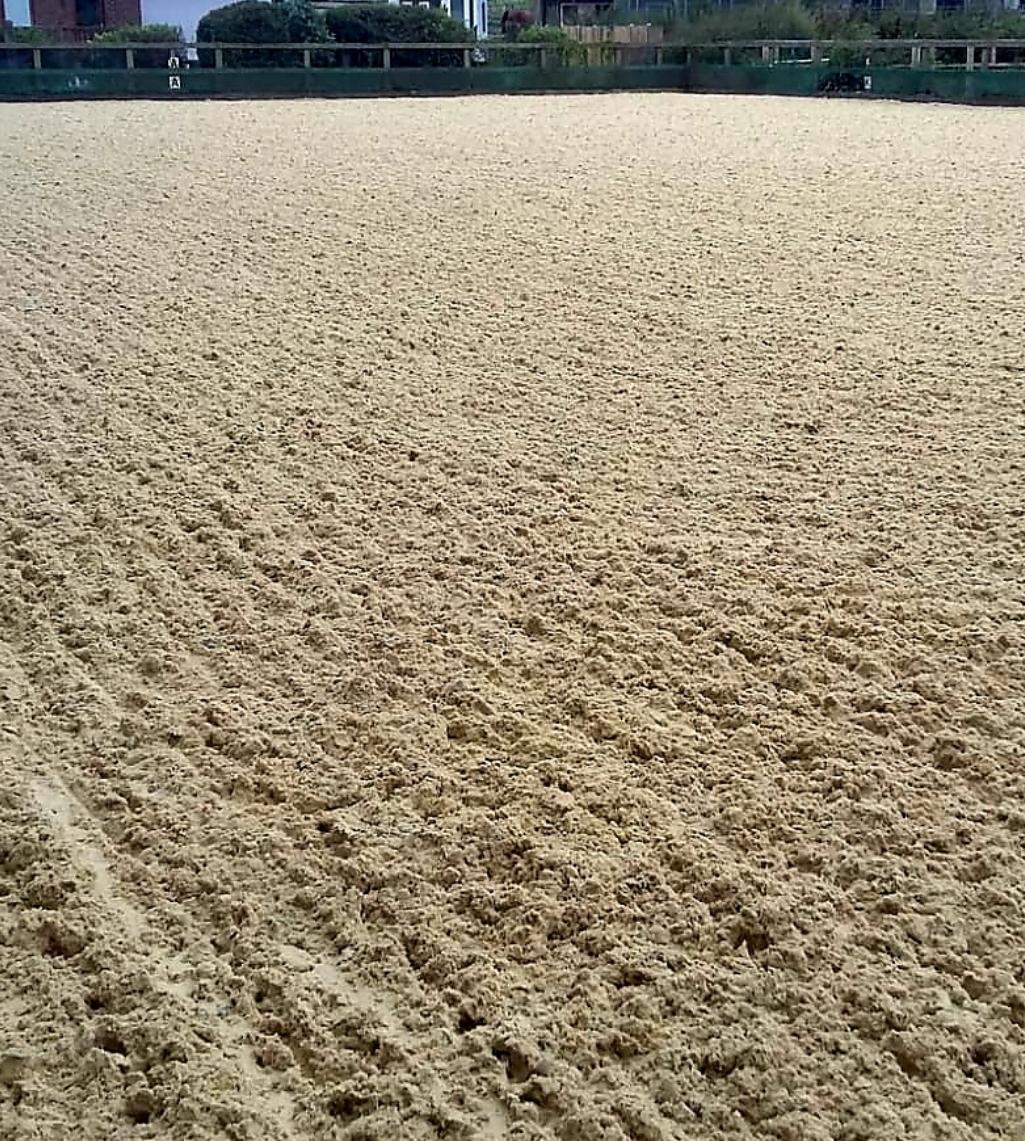 Waxfibre surface foord equestrian
